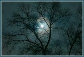 Что приносит Луна