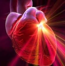 Сердце старого Гарфилда