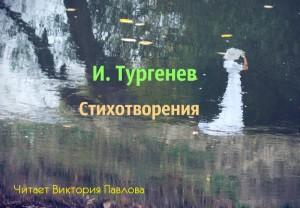 Тургенев И. Что тебя я не люблю