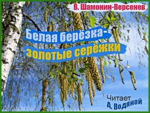 В. Шамонин-Версенев. Белая березка - золотые сережки - чит. А. Водяной