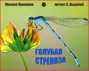 М. Пришвин. Голубая стрекоза - чит. А. Водяной (РАДИО)
