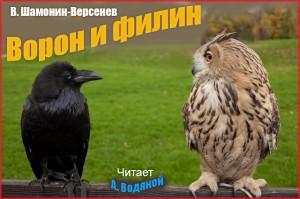 В. Шамонин-Версенев. Ворон и филин - чит. А. Водяной