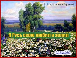 В. Шамонин-Версенев. Снится лето и дорога - чит. А. Водяной