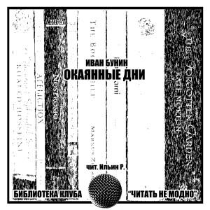 Окаянные дни. Ч. 2-2. Одесса 1919 г. (чит. Р. Ильин)