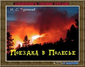 И. С. Тургенев. Поездка в Полесье (2) - чит. А. Водяной